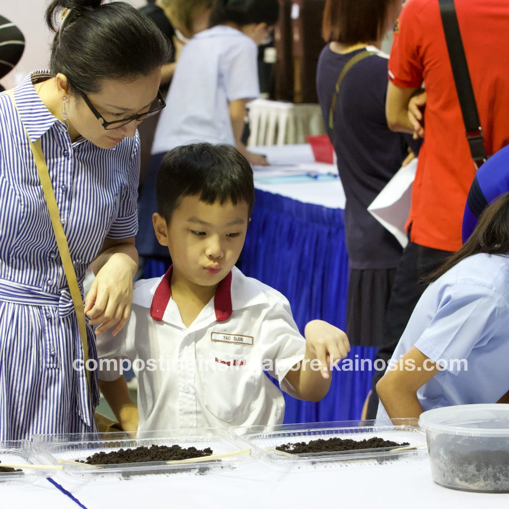 Primary school boy pointing at a pile of vermicompost and worms at CIS compost booth