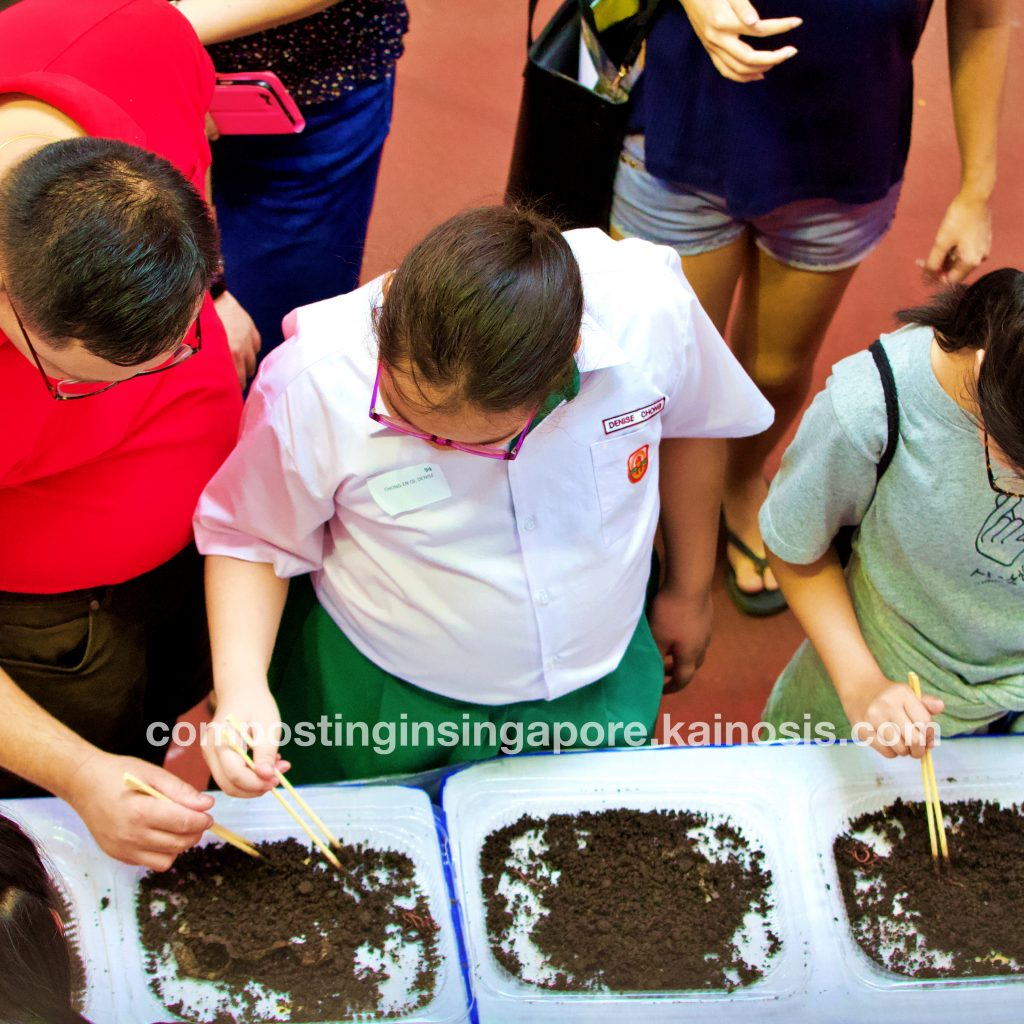 If you have never seen or touched a composting worm before, our booth gives you a great first experience!