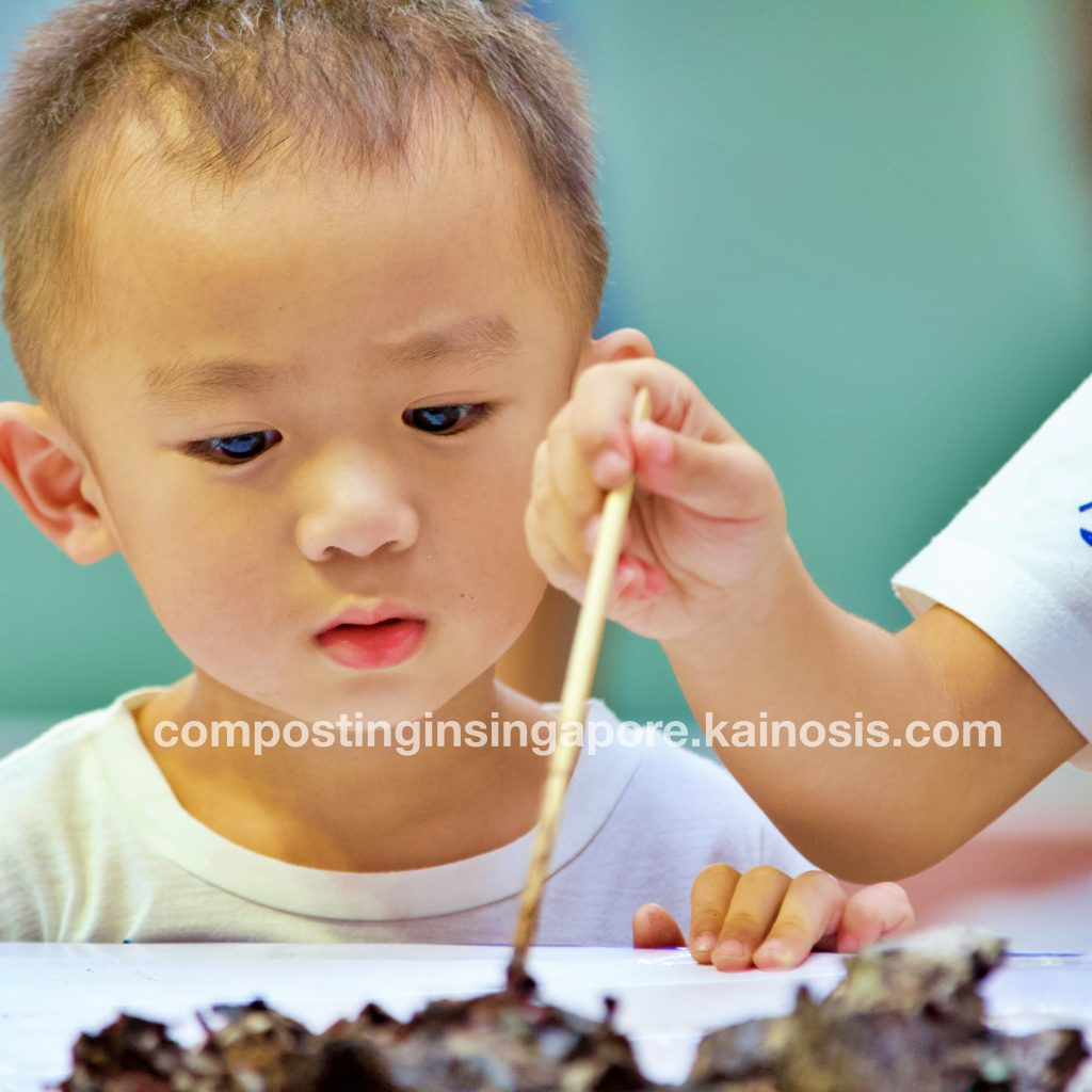 Little kid watches as his brother plays with composting worms